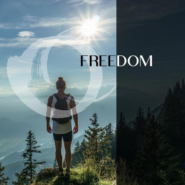 FREEDOM - Nouvelle sortie d'album pour CDM